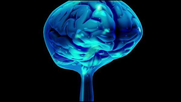 Beyin Omurilik Sıvısı Nedir ve Görevleri Nelerdir