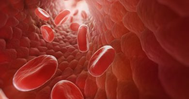 Bağırsakların Kan Hücreleri Üretebildiği Keşfedildi