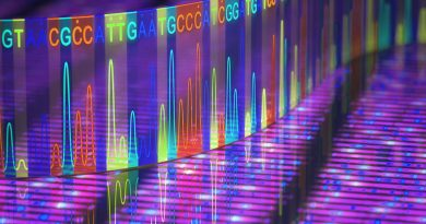 Biyoinformatik ve Yeni Nesil Dizileme