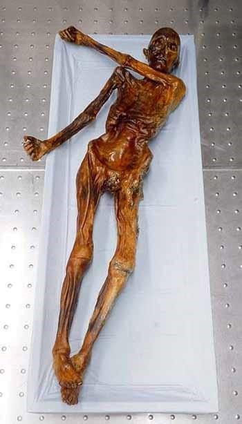 Ötzi - Buz Adam'ın Hikayesi 2