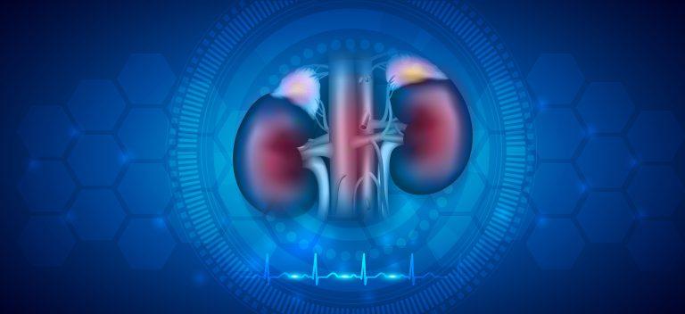 Diyabetik Nefropati Hasarı Mitokondri Transferiyle Azaltılıyor