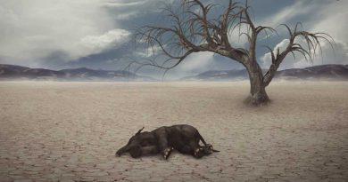 Altıncı Büyük Kitlesel Yok Oluş: Dinozorlardan Sonra Sıra İnsanlarda Mı?