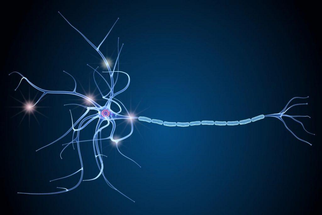 Dünyada En Sık Görülen 3. Sinir Sistemi Hastalığı: Multipl Skleroz (MS)