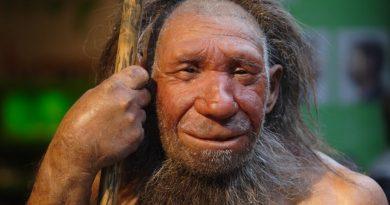 Kimdi bu Neandertaller?