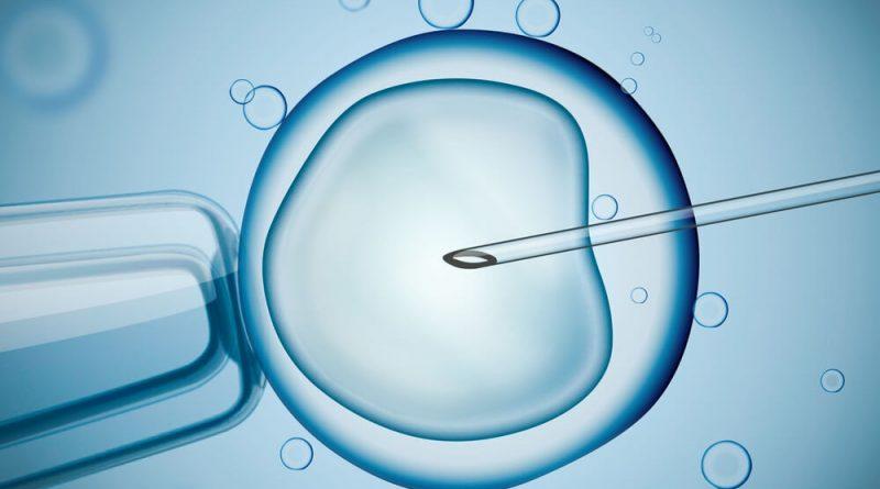 İlk Tüp Bebek Denemesi Neden Tutmaz