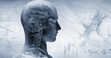 Polivagal Teori – Vagus Siniri ve Stres Arasındaki İlişki