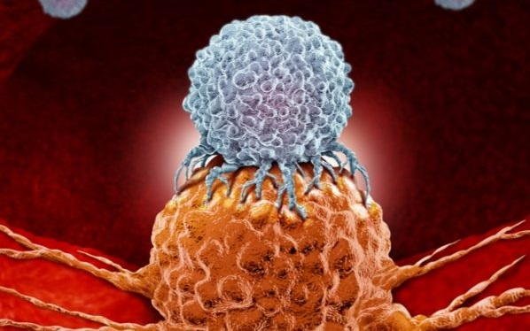 Hipermutasyona-Uğramış-Kötü-Huylu-Beyin-Tümörleri-Kemoterapi-ve-İmmünoterapiden-Nasıl-Kaçar