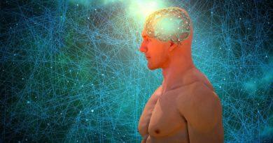 Zekanın-Genetiği-–-Zeka-Hangi-Etkenler-ile-Belirleniyor
