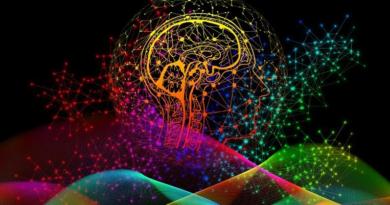 Beyinde Yeni Bir Ödül Sistemi Keşfedildi