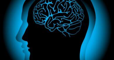 Beyinde Yeni Bir Korku Devresi Keşfedildi